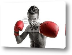 Постер Young boxer man isolated on studio