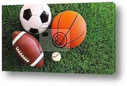 Постер Assortment of sport balls on grass