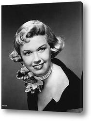 Постер Doris Day-1-1