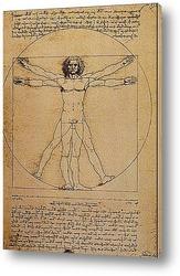Leonardo da Vinci-19