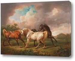 Постер Три Лошади в Бурном Пейзаже