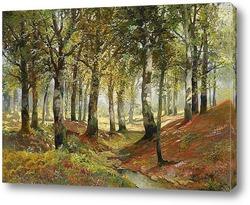 Осенний пейзаж леса