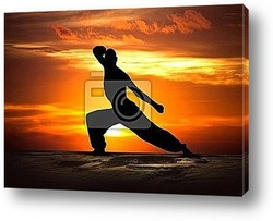Постер Martial Arts Fitness at Sunset