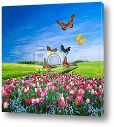 Постер Field of colorful flowers and a butterfly group