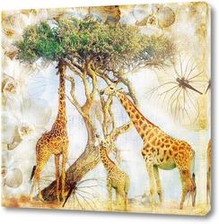 Жирафы на прогулке
