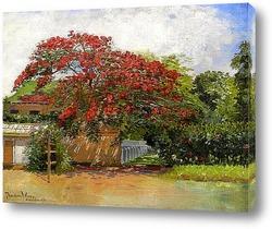 Картина Гавайский дом