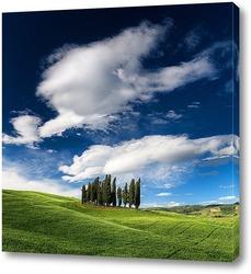 Картина Тосканские кипарисы