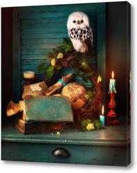 Картина Натюрморт с совой