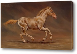 Постер Лошадь и песок