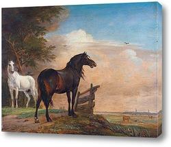 Пегая Лошадь