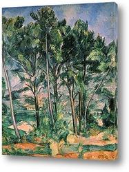 Cezanne039