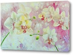 "Картина Картина ""Орхидеи"""