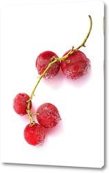 Постер Замороженные ягоды