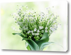 Постер Lily-of-the-valley