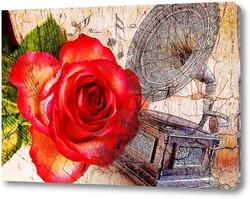 Роза и патефон