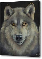 Постер Серый волк