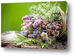 Букет полевых цветов в горах