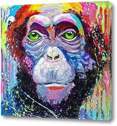 Картина Шимпанзе