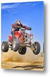 Постер Quad jumping