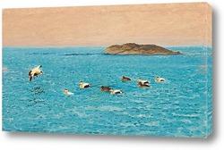 Картина Гаги в архипелаге