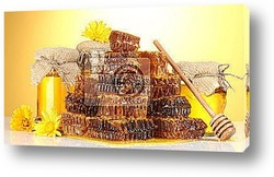 Постер Sweet honeycombs, barrel and jars with honey, isolated on white
