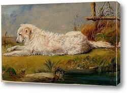 Домашняя собака, 1860