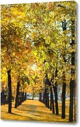Картина Аллея в городском парке