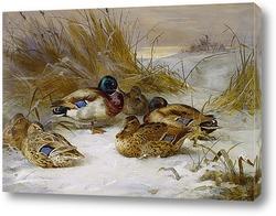 Зимний пейзаж с утками