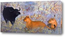 Постер Львы и быки