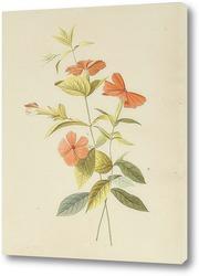Картина Лепестки