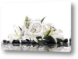 Постер Madonna lilies with spa stone with reflection