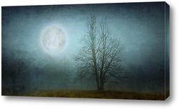 Постер Дерево в голубой туман
