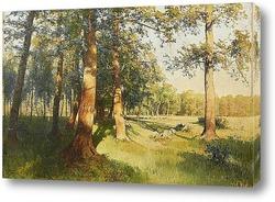 Картина Луг залитый солнцем, 1913