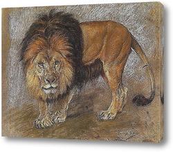 Постер Шагающий лев