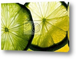 Постер Lime slices