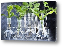 Постер Ecology laboratory