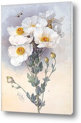 Watercolor Flower Collection: Lilies Bouquet