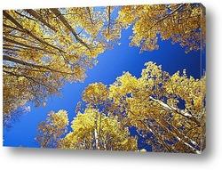 Осень - радостное настроение