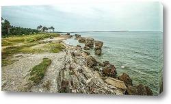 Постер Побережье Балтийского моря