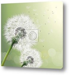 Постер Vector Dandelion