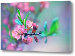 Постер Весенние цветение.