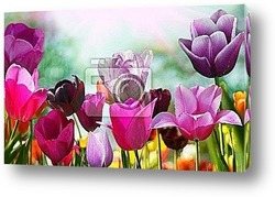 Постер Beautiful spring flowers, tulips