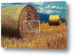 Постер Golden Hay Bales on a perfect sunny day