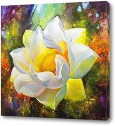 fleur de lotus et reflets