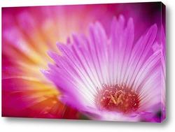 Flower395