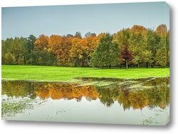 Постер Лес после дождя осенью