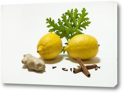 Картина лимон, имбирь, корица, гвоздитка
