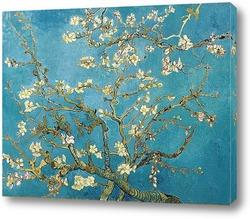 Картина Цветущая ветка миндаля