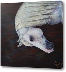 Картина Белая лошадь.