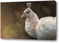 Картина Белый павлин